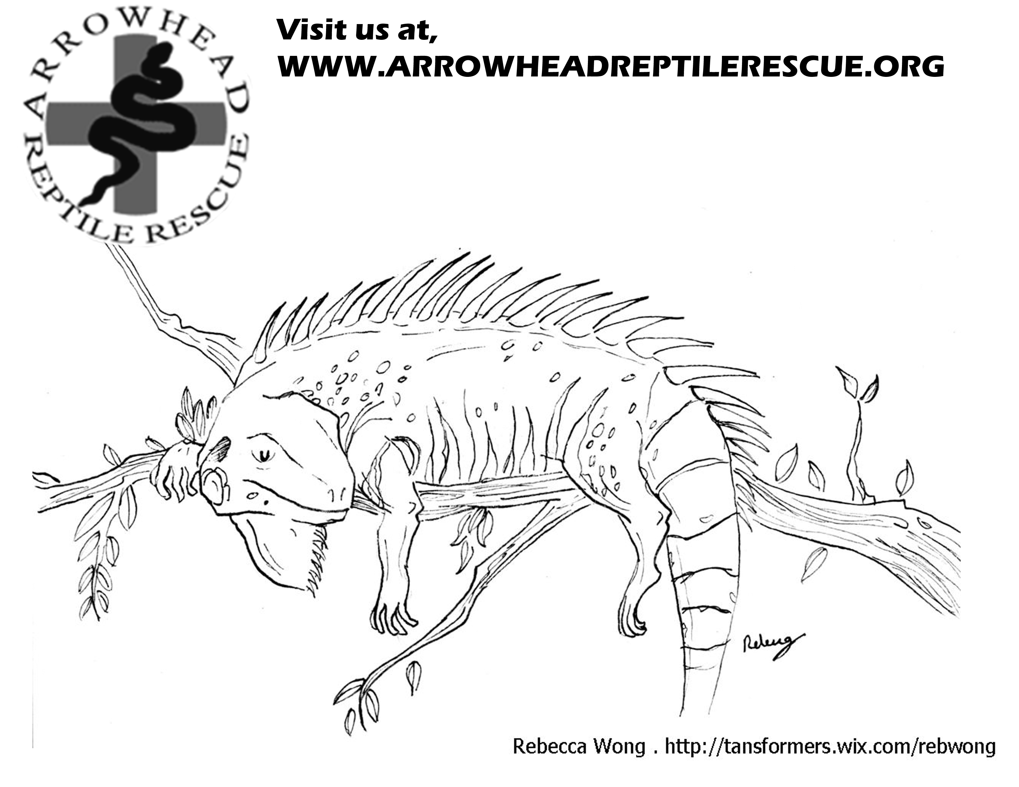 arrowheads coloring pages - photo#33